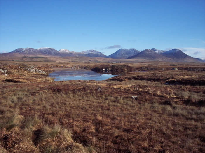 Fields with Mountains in background at Connemara