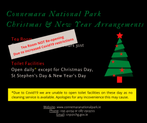 Christmas and New year Arrangements