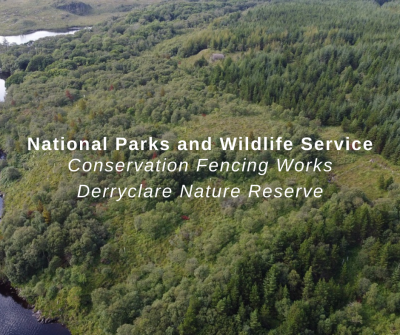 Conservation Works at Derryclare Nature Reserve