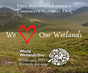 We Love Our Wetlands - World Wetlands Day